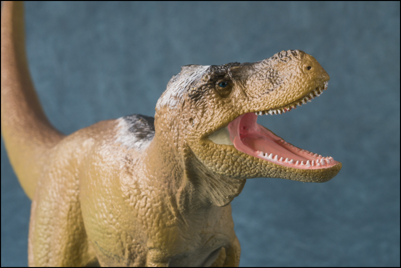 The 2013 KINTO FAVORITE Tarbosaurus walkaround by Kikimalou KINTO_FAVORITE_Tarbosaurus_11