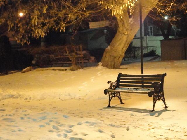 klupa nekoga čeka - Page 5 Bench_in_the_winter_park_guy_ricketts
