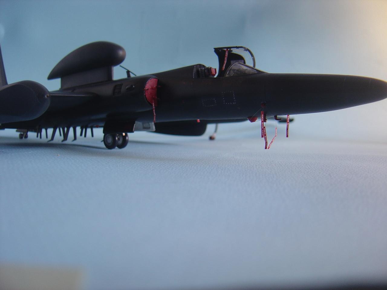 U-2  (οχι το συγκροτημα ρεεε...) R  Senior Span. - Σελίδα 3 DSC02903