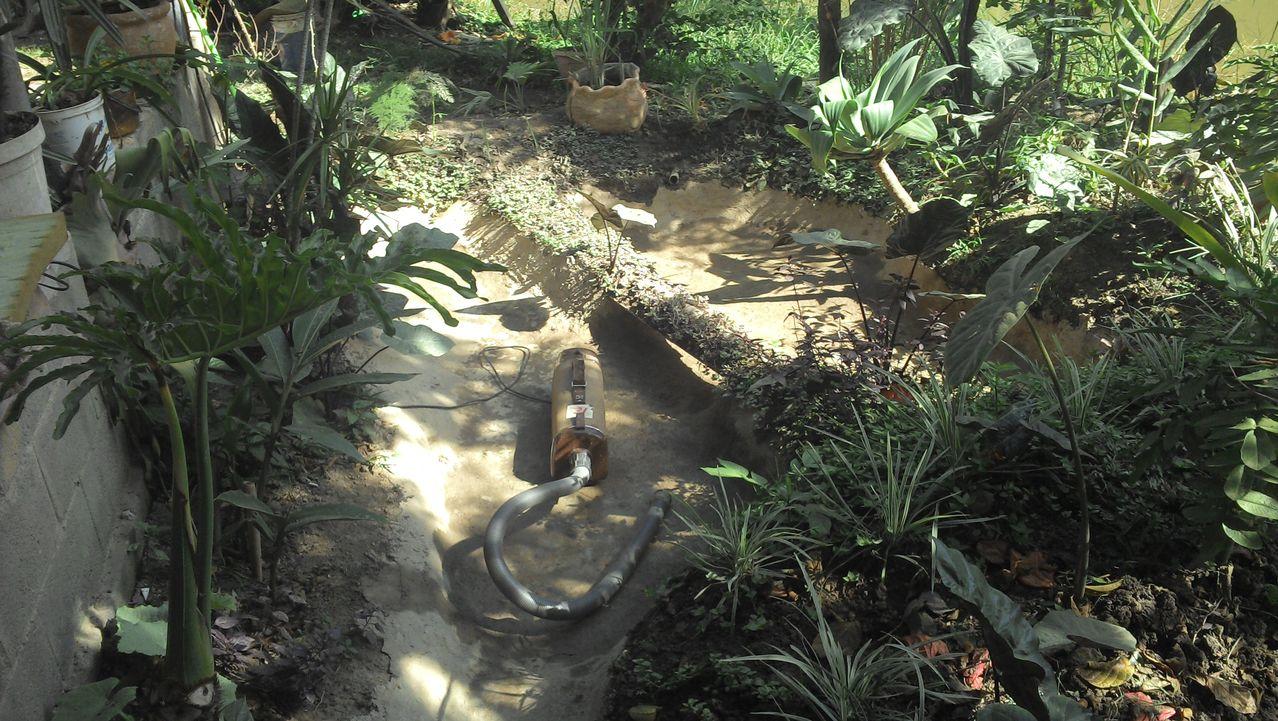 Construindo meu laguinho natural, me diga oque por nele. Image