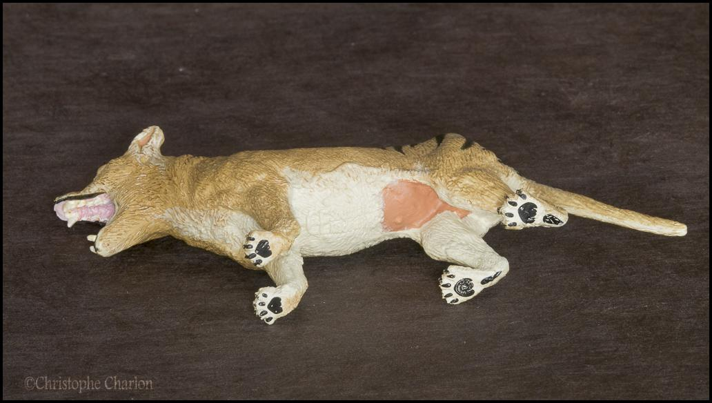 Southlands Replicas Thylacine (the toy) walkaround by Kikimalou Southlands_Replicas_00000_Thylacine_male_14.jpg