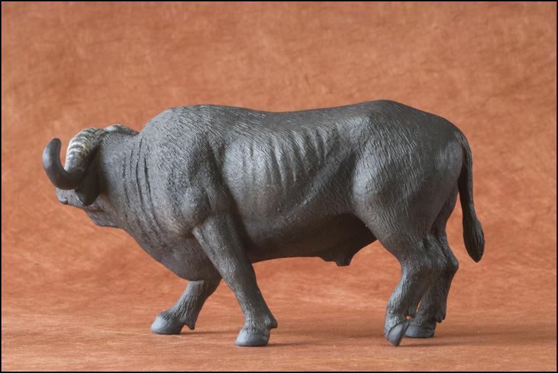 Kikimalou's 2012 MÖJO FUN cape buffalo walkaround Cape_Buffalo_Mojo_Fun-8