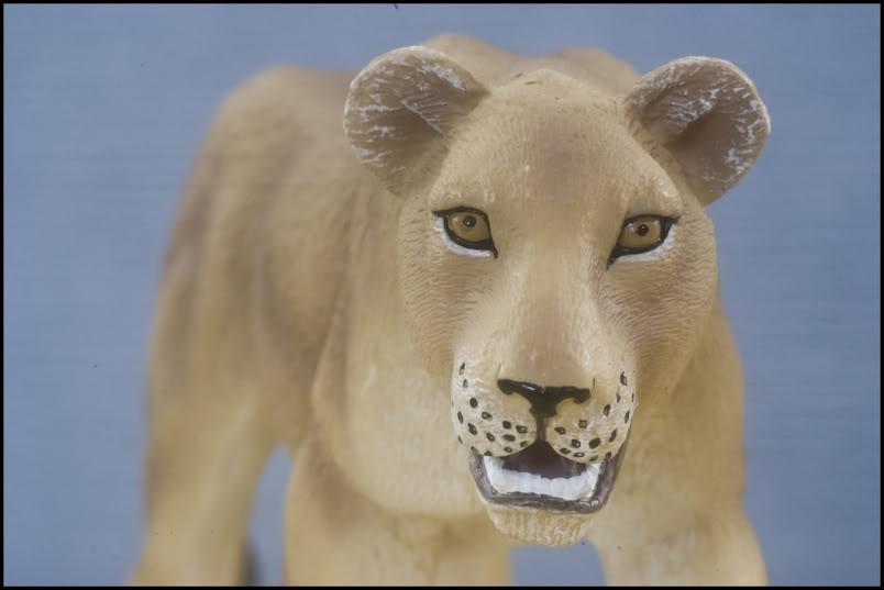 MOJO : The lions family walkaround review by Kikimalou Mojo_lions_1_12