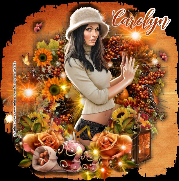 Carolyn's July - September Pick Up Thread Carolyn-2018autumnnight