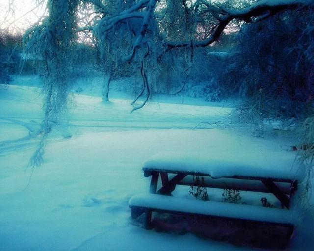 klupa nekoga čeka - Page 5 23476_Nature_Winter_Snow_Frozen_Bench_Rivers_Hd