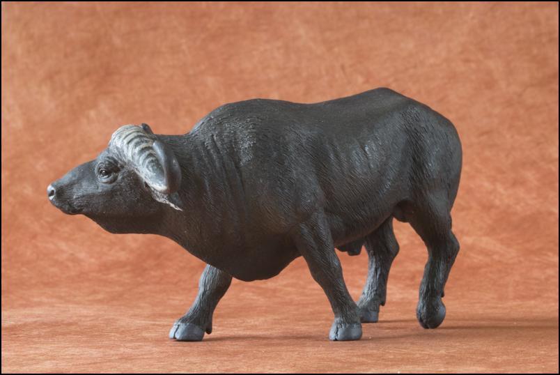 Kikimalou's 2012 MÖJO FUN cape buffalo walkaround Cape_Buffalo_Mojo_Fun-9
