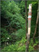 Sljeme - rudnici grofa Cariona P8052280