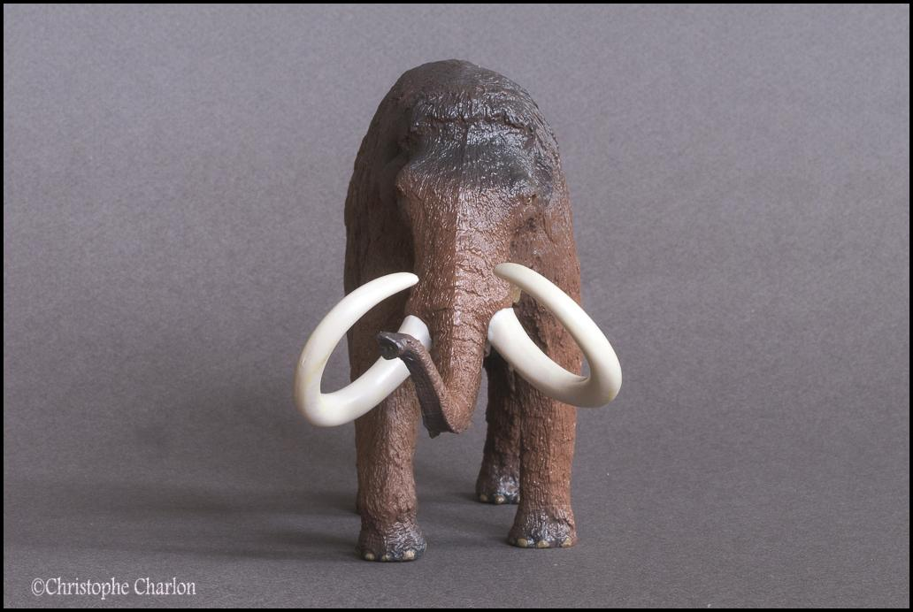 Kinto Favorite FP-002 Wooly Mammoth: A walkaround by Kikimalou Kinto_Favorite_FP-002_Woolly_Mammoth_8.jpg_origi