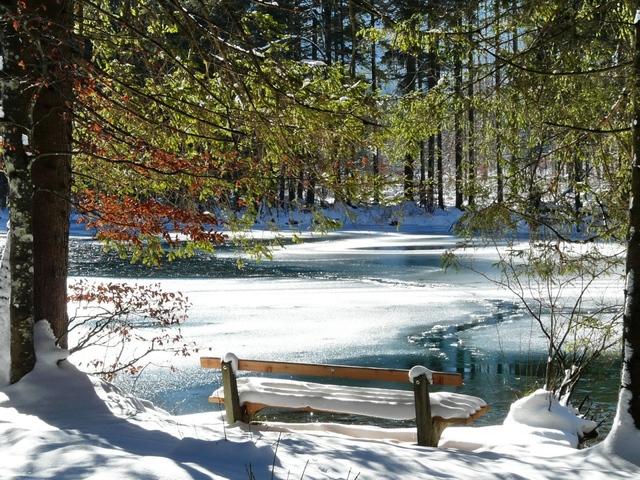 klupa nekoga čeka - Page 2 Bench_spring_coast_lake_ice_thawing_snow_trees