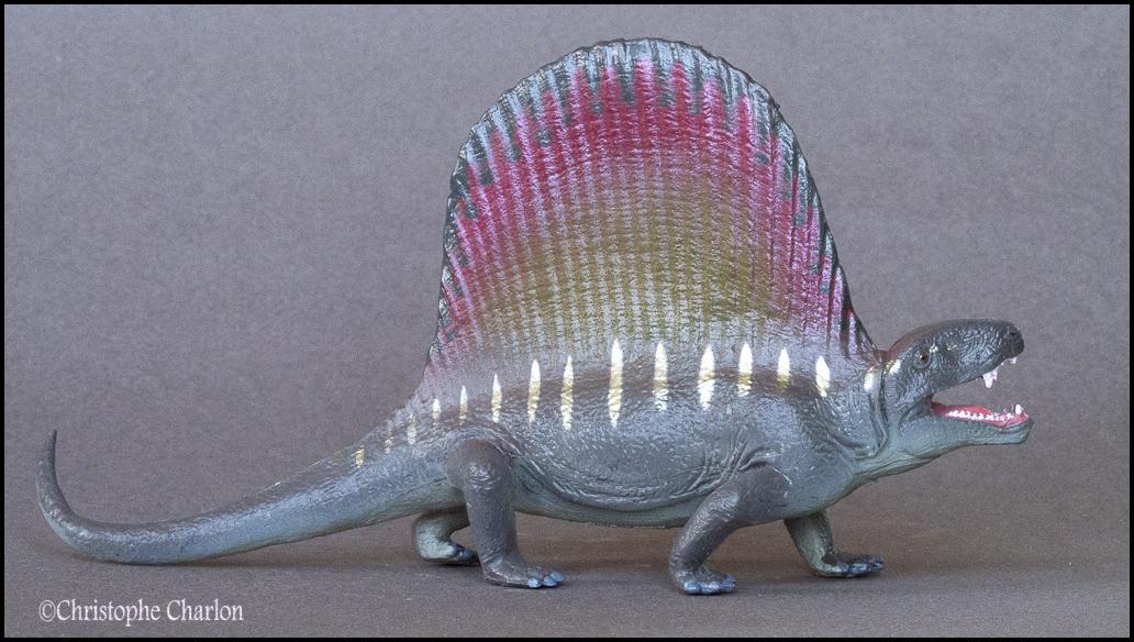 Favorite Prehistoric Life Softmodel Dimetrodon: A walkaround by Kikimalou Kinto_Favorite_Dimetrodon_1