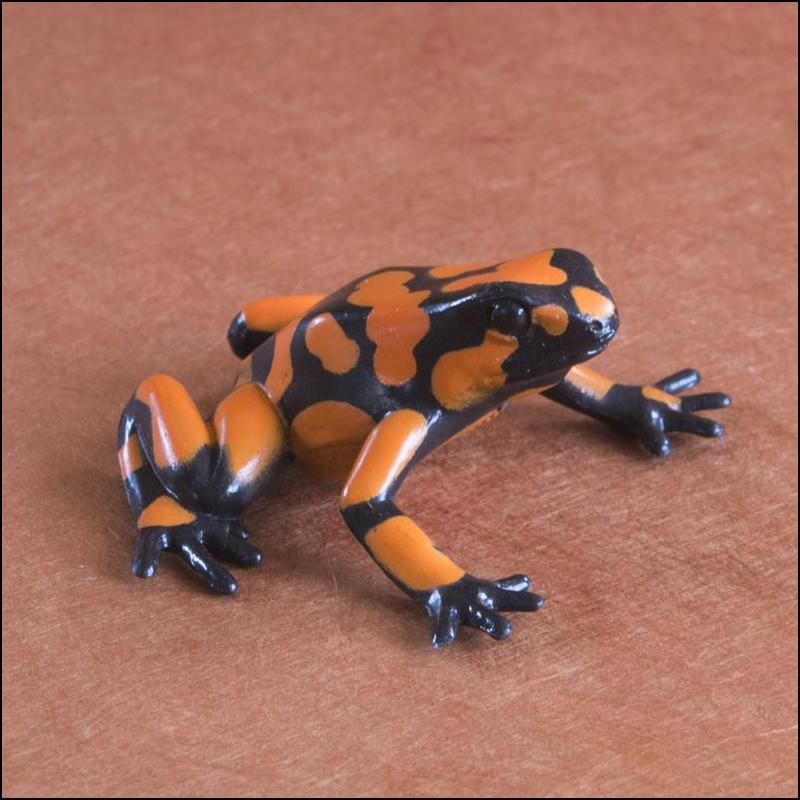 Club Earth Poison dart frogs set: A walkaround by Kikimalou XXHarlequinpoisonfrog-3.jpg_original