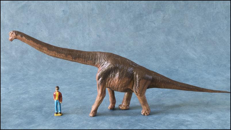 The 2013 KINTO FAVORITE Brachiosaurus walkaround. Brachiosaurus_Kintofavorite_0