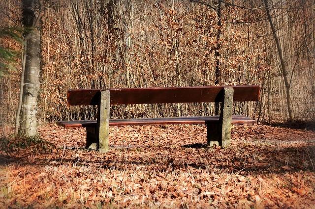 klupa nekoga čeka - Page 2 Bench_1221686_960_720