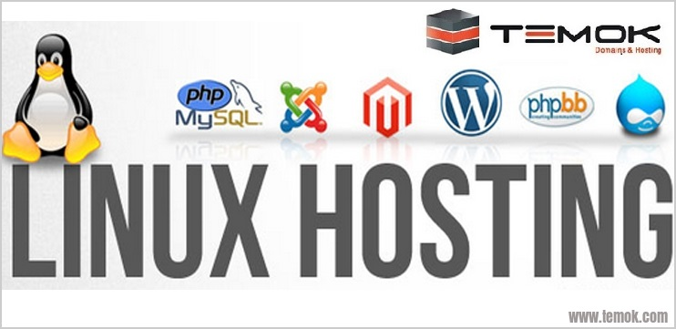 Solid & Fast US Linux Shared Hosting With Unlimited Bandwidth Starting at $2.99/Month USA_Linux_Shared_Hosting