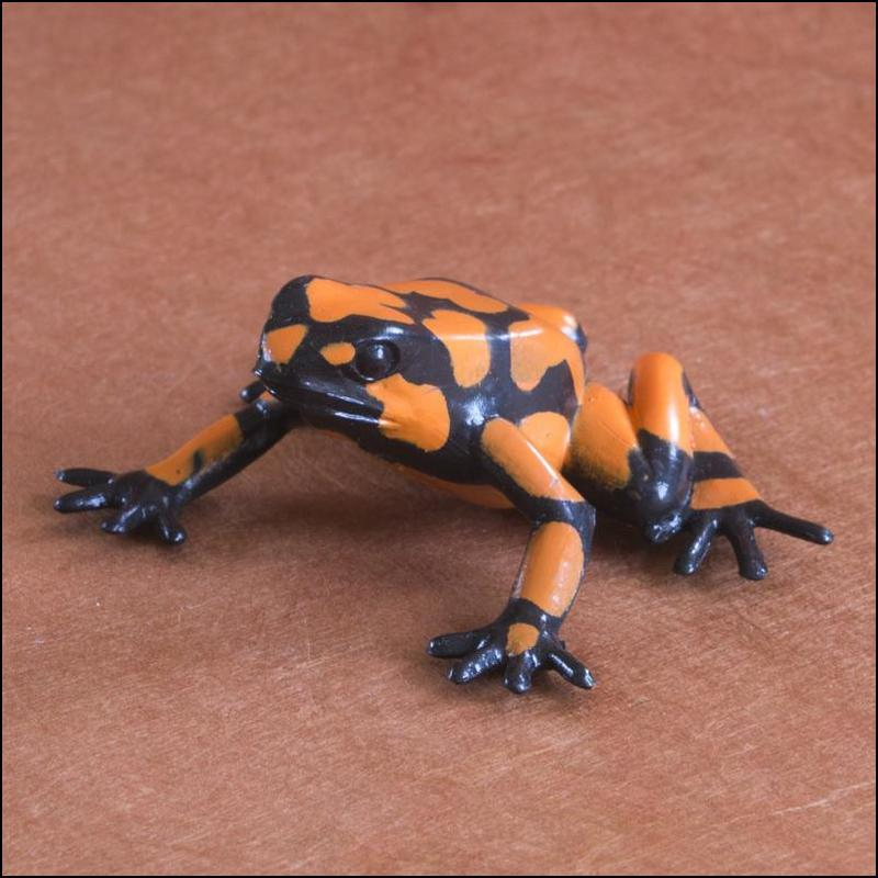 Club Earth Poison dart frogs set: A walkaround by Kikimalou XXHarlequinpoisonfrog-1.jpg_original