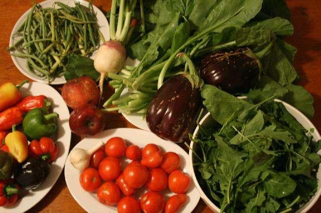 Povrće Clagett_farm_csa_week_19
