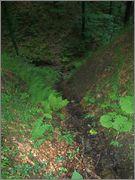 Sljeme - rudnici grofa Cariona P8052288