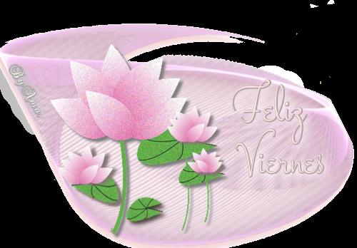 Lotos en Rosa VIERNES