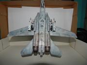 F-14A TOMCAT FERRIS2 HASEGAWA 1/72 23w8k1t