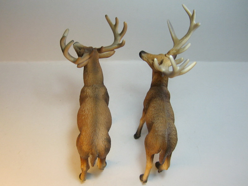 The new white tailed deer, and some comparisons to his retired brother. IMG_7337_zps43e88ad1