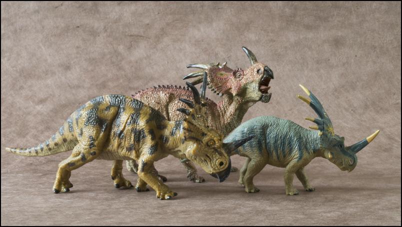 The 2013 KINTO FAVORITE Styracosaurus walkaround. Styracosaurus_Kinto_Favorite-17