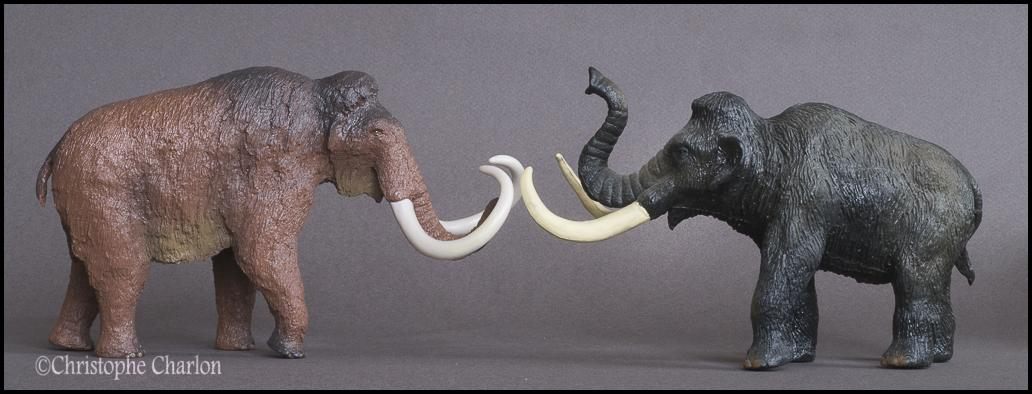 Kinto Favorite FP-002 Wooly Mammoth: A walkaround by Kikimalou Kinto_Favorite_FP-002_Woolly_Mammoth_16.jpg_orig