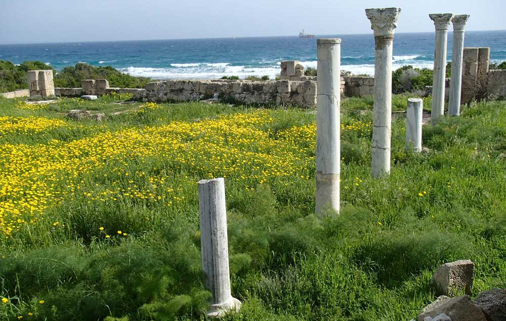 Зустрічаємо Новий рік на Кіпрі P2277585
