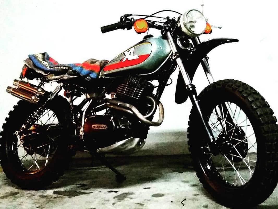 Yamaha Tenére XT 660Z Scrambler? XL_500