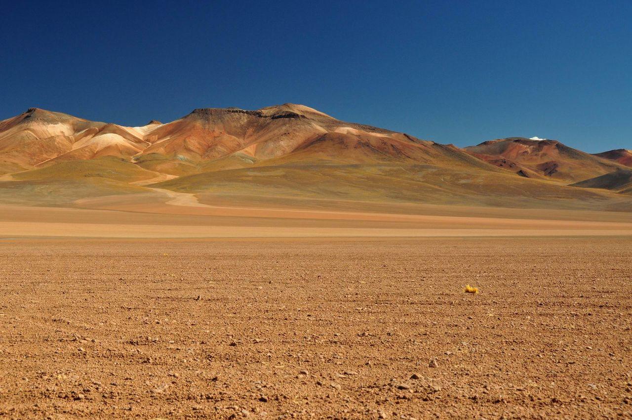 Far Harbor - Page 2 Atacama_desert_in_bolivia