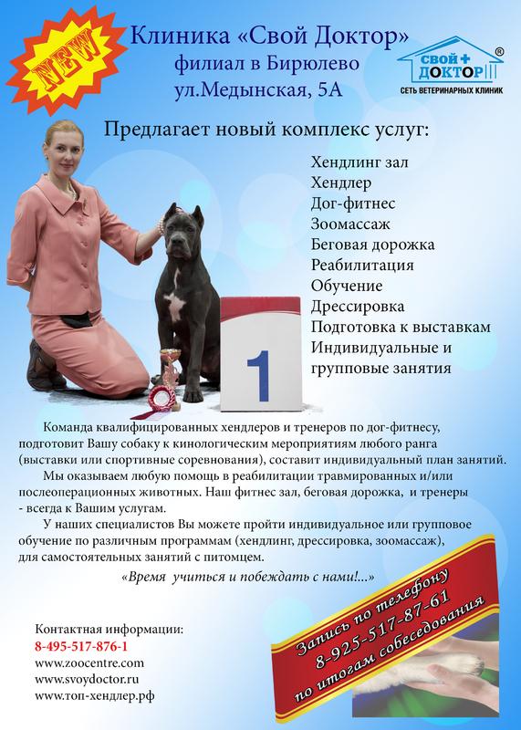 Профессиональный хендлинг и курсы по хендлингу Svdokt1new