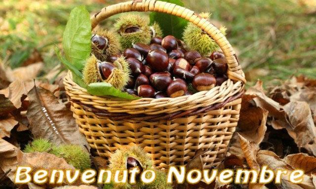 Martedi 1 Novembre Novembre2