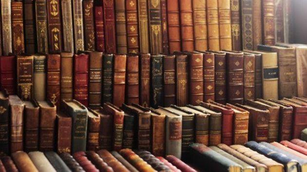 Kakva je korist od čitanja? Ove slike to znaju. Knjige-ea00d20aa8f0de3fa55b88a9fb1bcb5f_view_article
