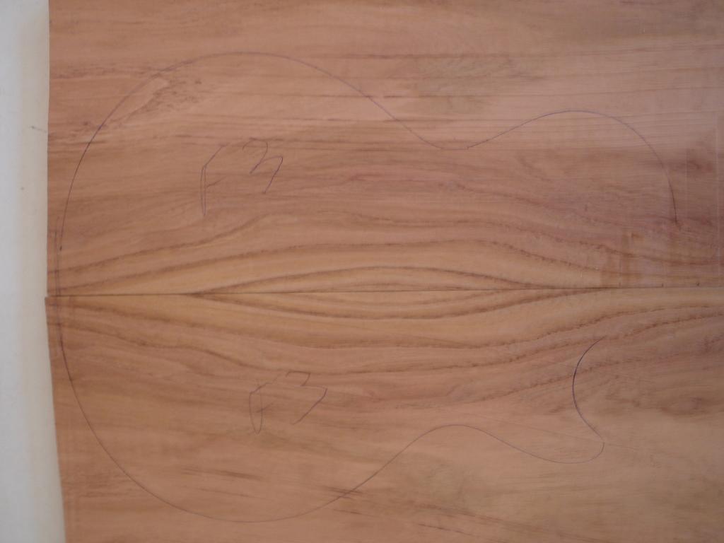 Ledur Escaravelho 6 cordas - Escolha da marcação em Abalone DSC06313