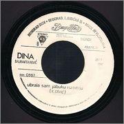 Dina Bajraktarevic - Diskografija R_5320776_1390485794_7569