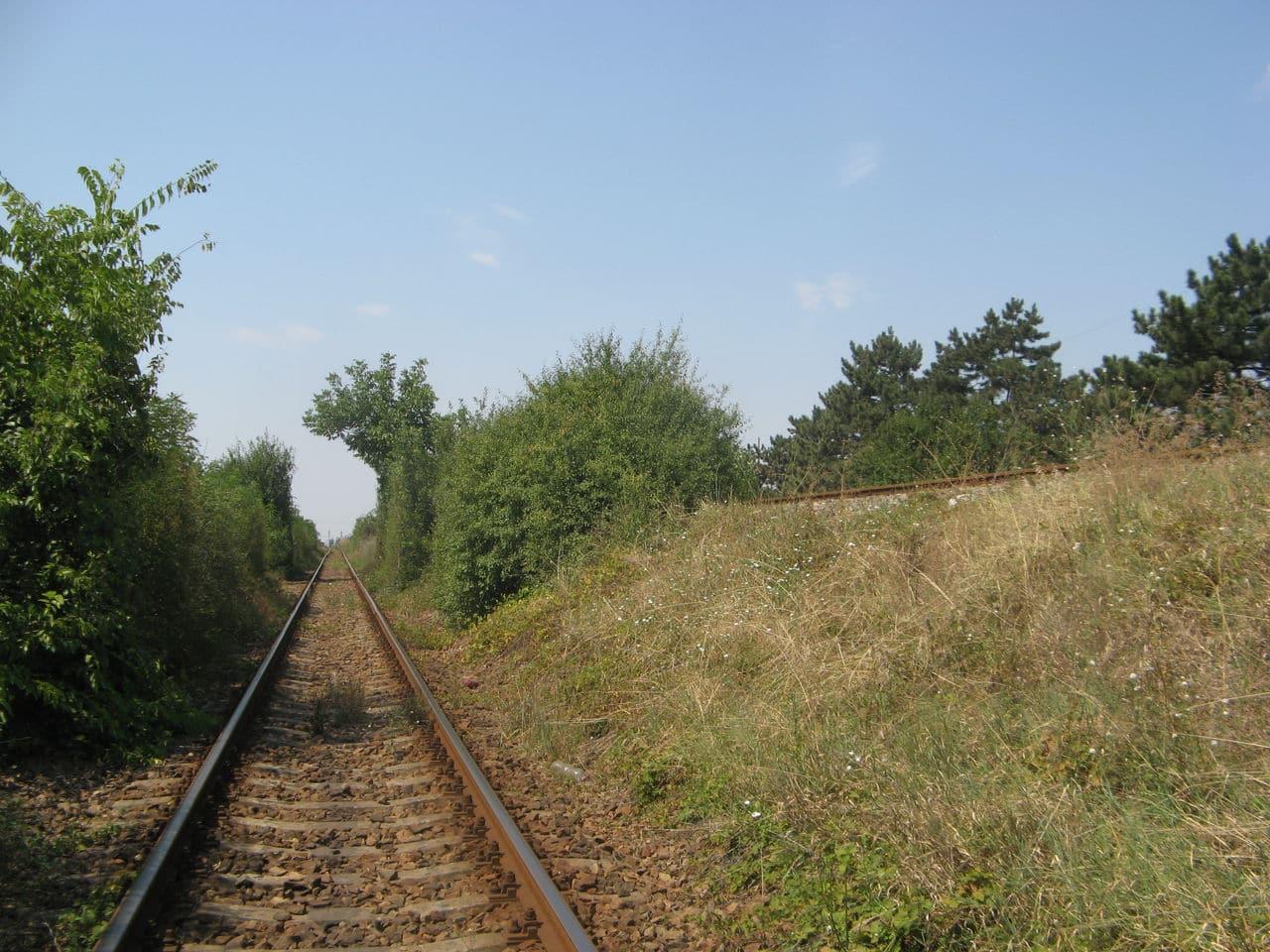 Calea ferată directă Oradea Vest - Episcopia Bihor IMG_0069