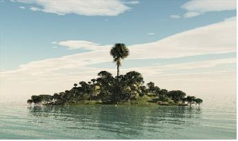 Aquarismo: Como as regras basicas de fotografia podem nos ajudar??? Sem_t_tulo11