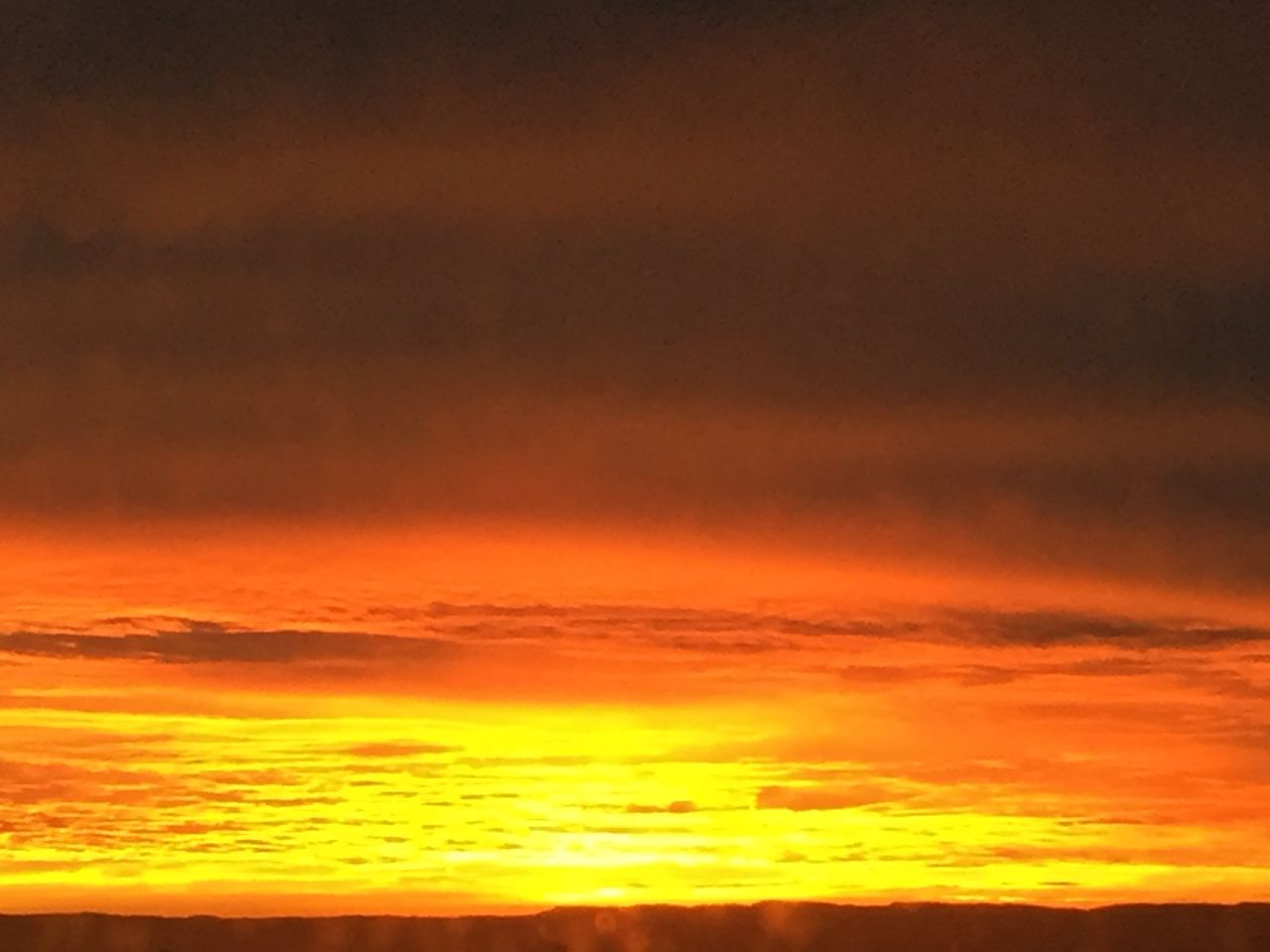 Sonnenaufgang 23.11. IMG_7523
