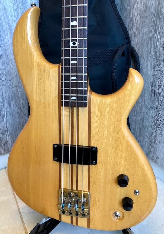 Aria Pro II RSB-600 Rev-Sound Bass IMG_0360
