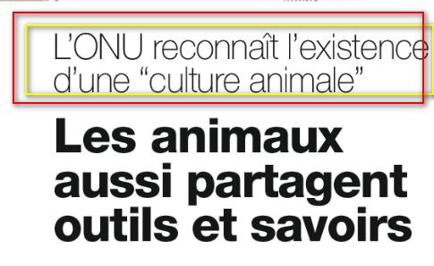 Sourate 6 AL-ANAM (LES BESTIAUX) :Culture Animal Image
