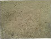 MI INSTINTO DE JABALÍ Y LOS PETROGLIFOS Petroglifo37