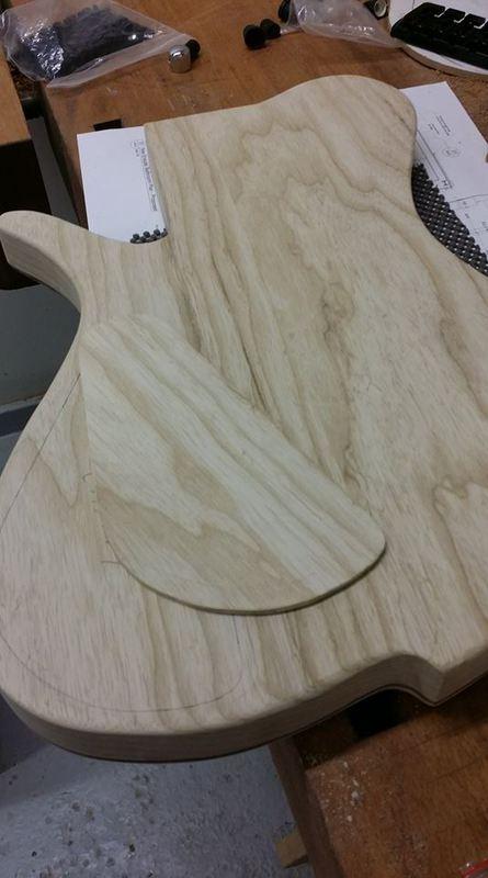 Construção caseira (amadora)- Bass Single cut 5 strings 11751135_10153533347289874_1628384797_n