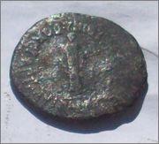 Semis Cartagonova (Augusto) 102_1408