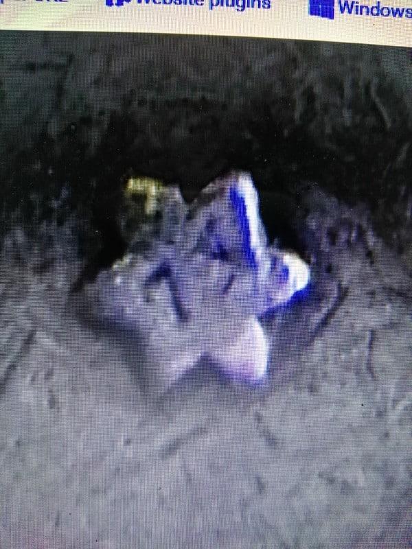 5 pesetas 1871 (*18-73). Amadeo I Estrella736