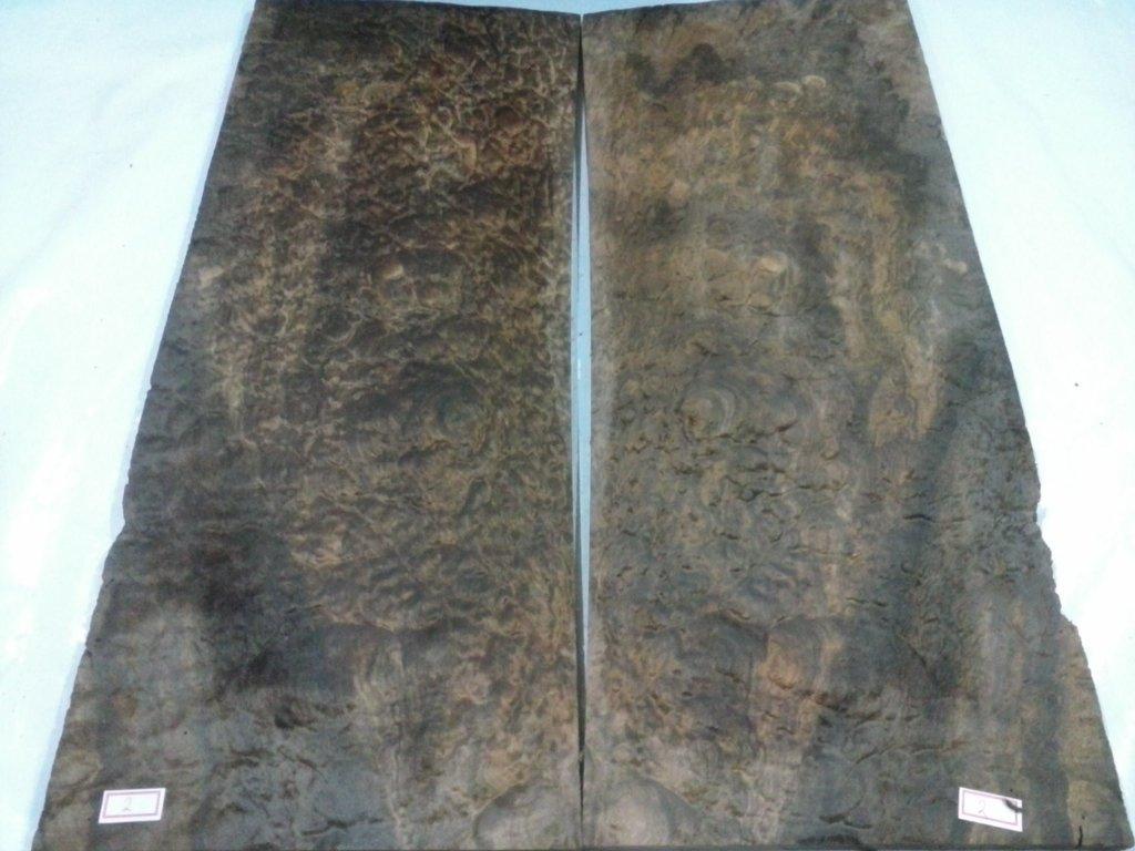 Ledur Escaravelho 6 cordas - Escolha da marcação em Abalone CAM00810