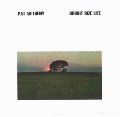Los mejores discos de Pat Metheny Pat_me
