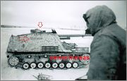 """Hornisse""/""Nashorn""  -  принадлежность и матчасть Nashorn_4_519_Panzerjaeger_Abt_Witebsk_4"