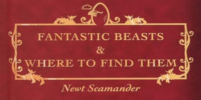 Το παράπονο του Redmayne  Fantastic_beasts_and_where_to_find_them_eddie_re