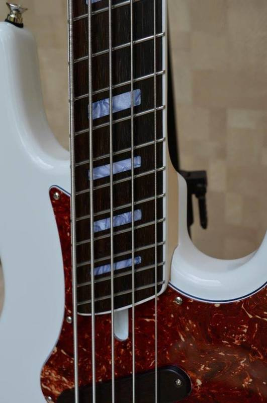 Construção SMartyn Super Jazz Bass 5 Custom 10406737_938685716210436_4466263399073495300_n
