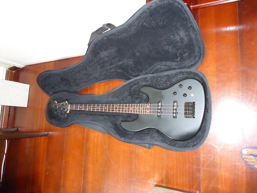 Série Fender DSC00351