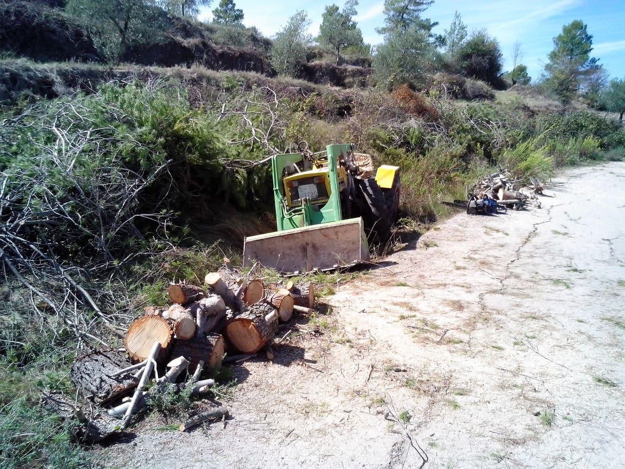 [Pasquali 989] Unas fotillos y vídeo de mi tractor IMG_20130920_124003